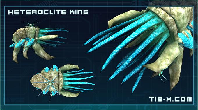 The Heteroclite King