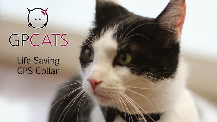 Designed by a veterinarian, GPCats finally gives you peace and comfort while your cuddly friend is exploring the world.