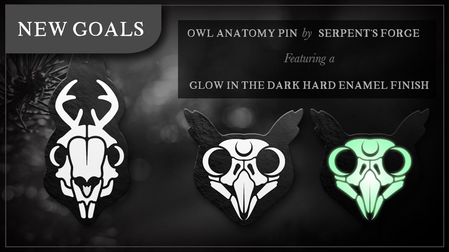 Owl Anatomy Glow in the Dark Hard Enamel Pin by Serpent\'s Forge ...