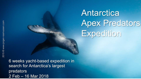 Antarctica- Tears of the sea