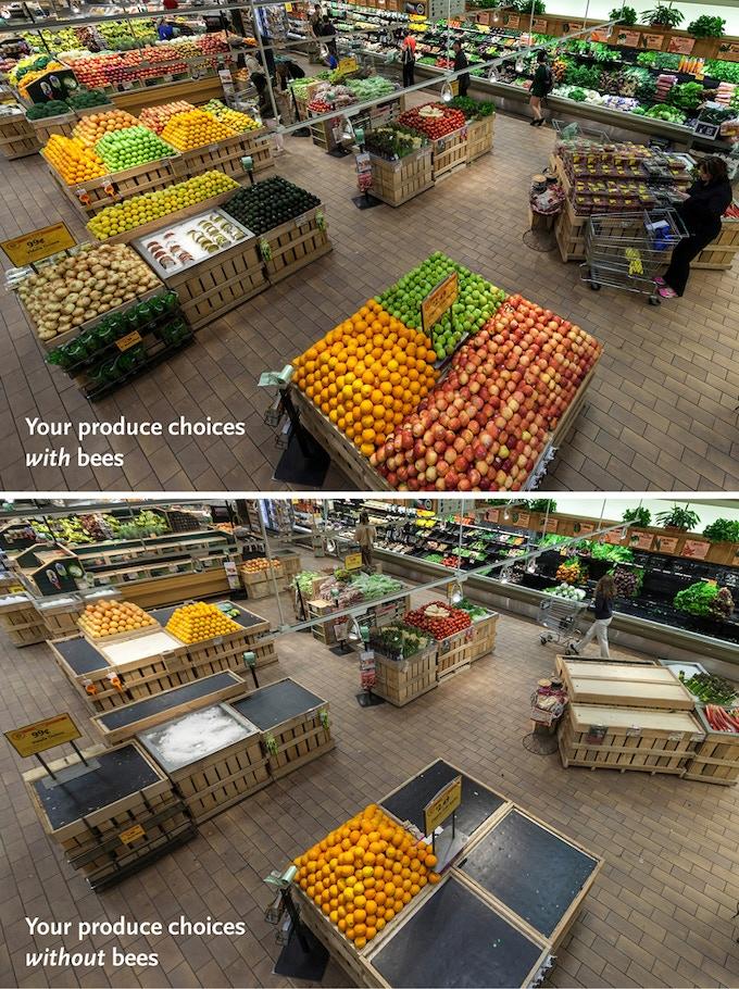 PRNewsFoto/Whole Foods Market