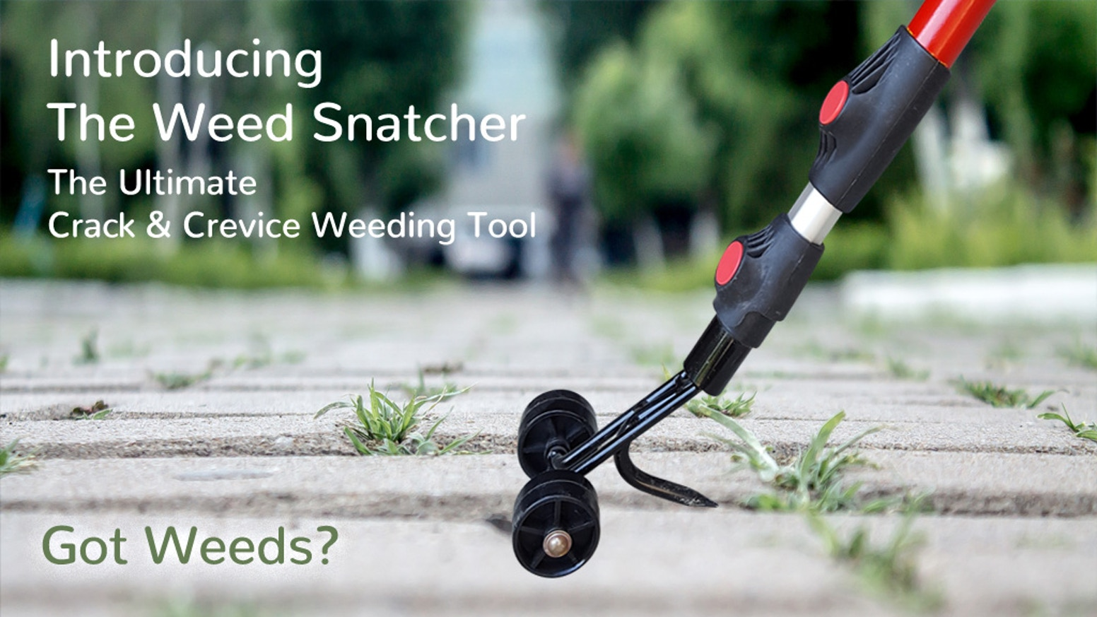 Weed Snatcher The Ultimate Crack Amp Crevice Weeding Tool