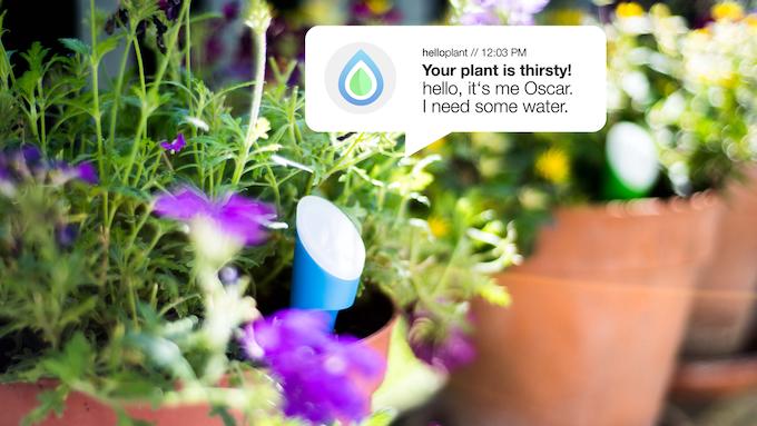 Helloplant هلوپلنت گجت جدید نگهداری گیاه مراقبت از گیاهان گجت هوشمند هلوپلنت