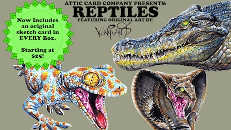 attic cards reptiles trading cards by attic card company. Black Bedroom Furniture Sets. Home Design Ideas