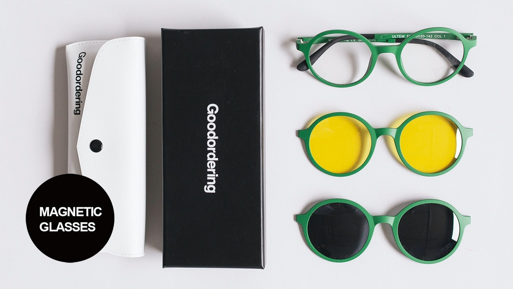 Goodordering Magnetic Glasses project video thumbnail