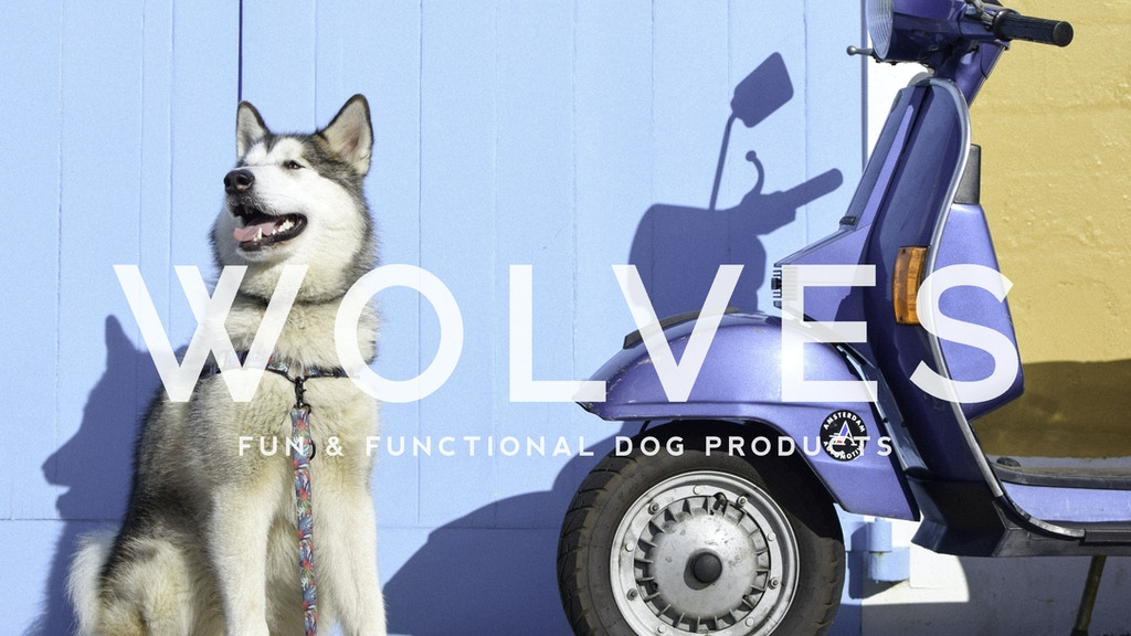 Wolves of Wellington: Fun & Functional Dog Products project video thumbnail