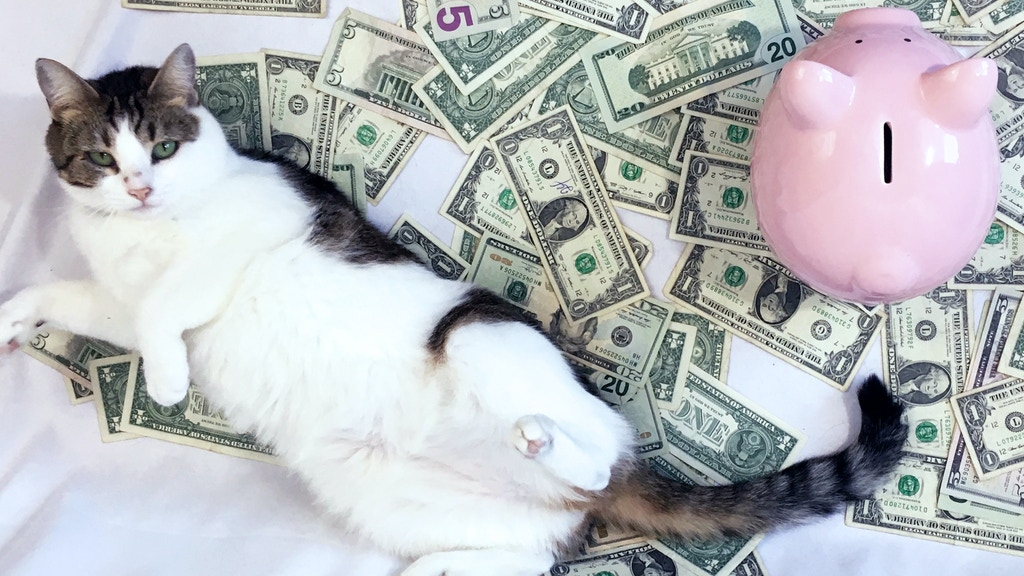 Get Your Money Together: your purr-fect finance workbook project video thumbnail