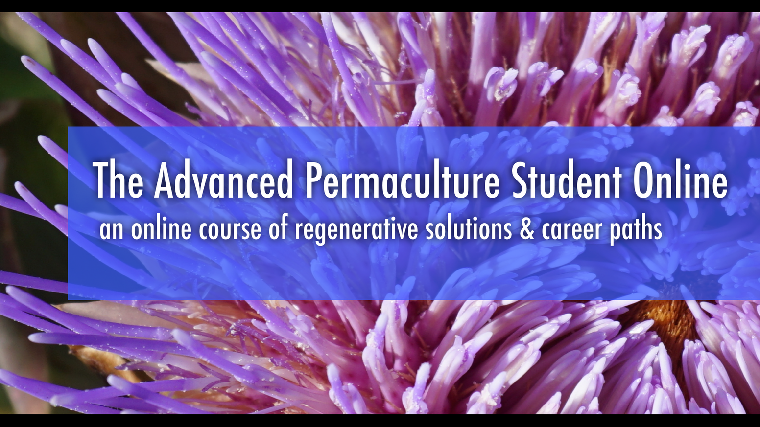 An Advanced, Online Permaculture Course that covers a Full Spectrum of Profitable & Proven Regenerative and Holistic Career Paths.