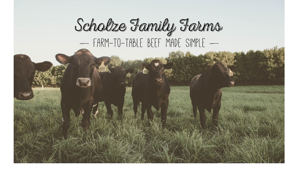 Farm-to-Table Beef, Made Simple