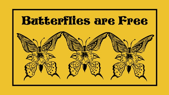 Butterflies are Free: A comedy in two acts by Leonard Gershe