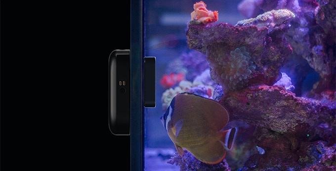 Moai robot for your aquarium by moai kickstarter for Moai fish tank cleaner