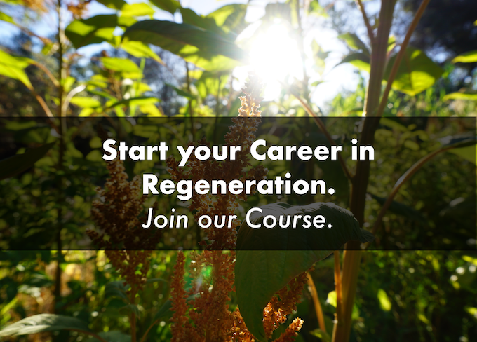 The advanced permaculture student online by matt powers kickstarter this online advanced course is the final piece in matts vision of a k 12 educational arc leading students directly to professional regenerative careers fandeluxe Image collections