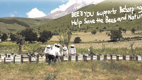 Support Beekeeping and Bee Products