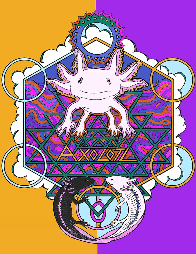 Axolotl art print from Last Chance Earth Endangered Species Book