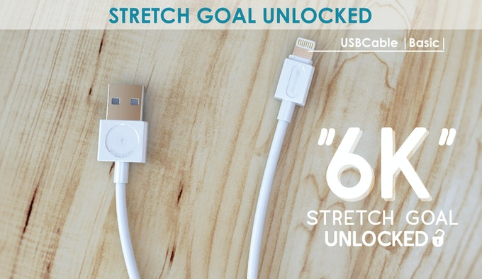 $6000,- reached! FREE USB Cable with your Flip bag!