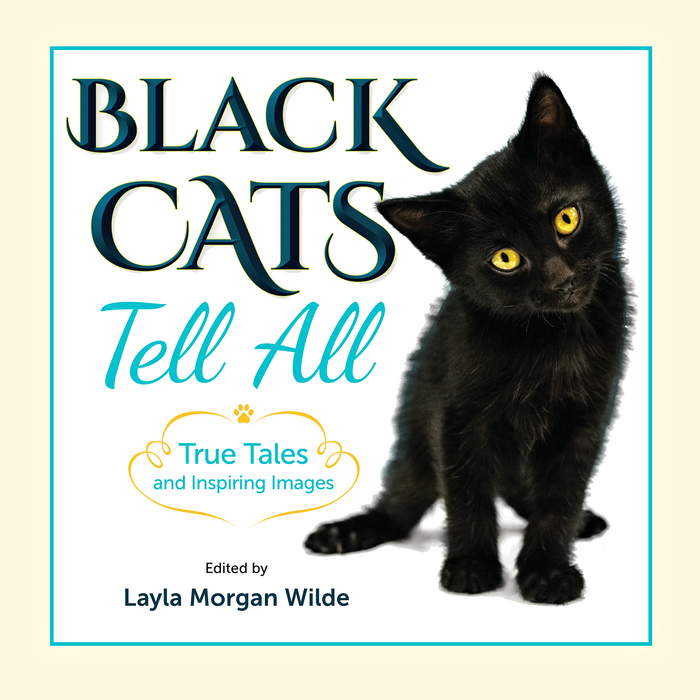 Welcome purrs to all Black Cat Tells All tribe members and cat lovers. Our nonprofit book of pawsitivity is finally published. An e-book is available via our website. Other e-versions and the soft cover book will be published in September.