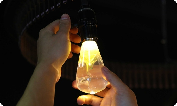The E.P. light bulb can be used as a common light bulb and build up mood in room