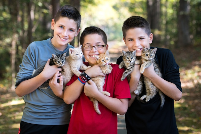 Our three cat-loving sons!