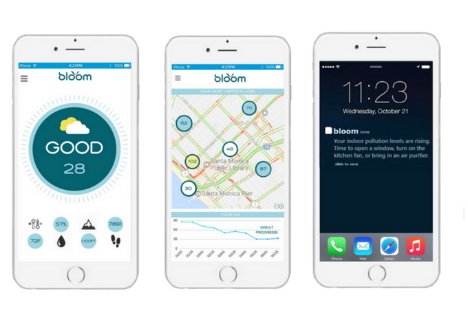Bloom's mobile app is concise, and easy to read at a glance
