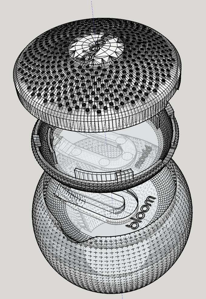 Bloom's shell dimensions was created by dividing sequential numbers of Fibonacci's sequence by one another