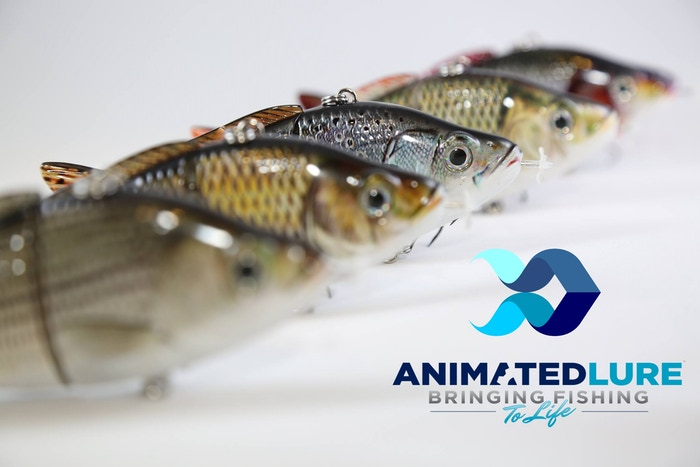 Animated Lure is a mechanized, self-propelling fishing lure that is electronically programmed to swim like a real fish.