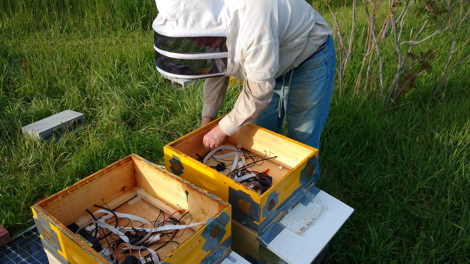 BeePi: A Multisensor Electronic Beehive Monitor by Vladimir Kulyukin