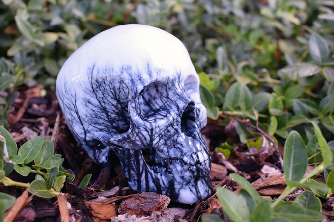 Example of Nature Theme Skull