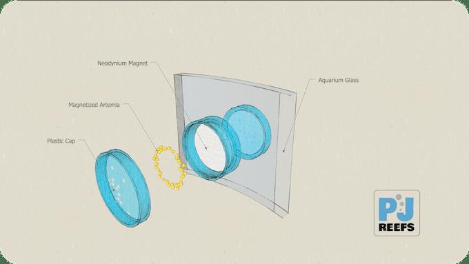 PJ reefs feeding container (Patent Pending)