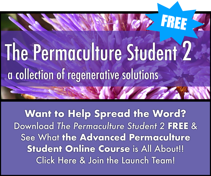 The advanced permaculture student online by matt powers kickstarter the patterns systems of our natural world permaculture design fandeluxe Image collections