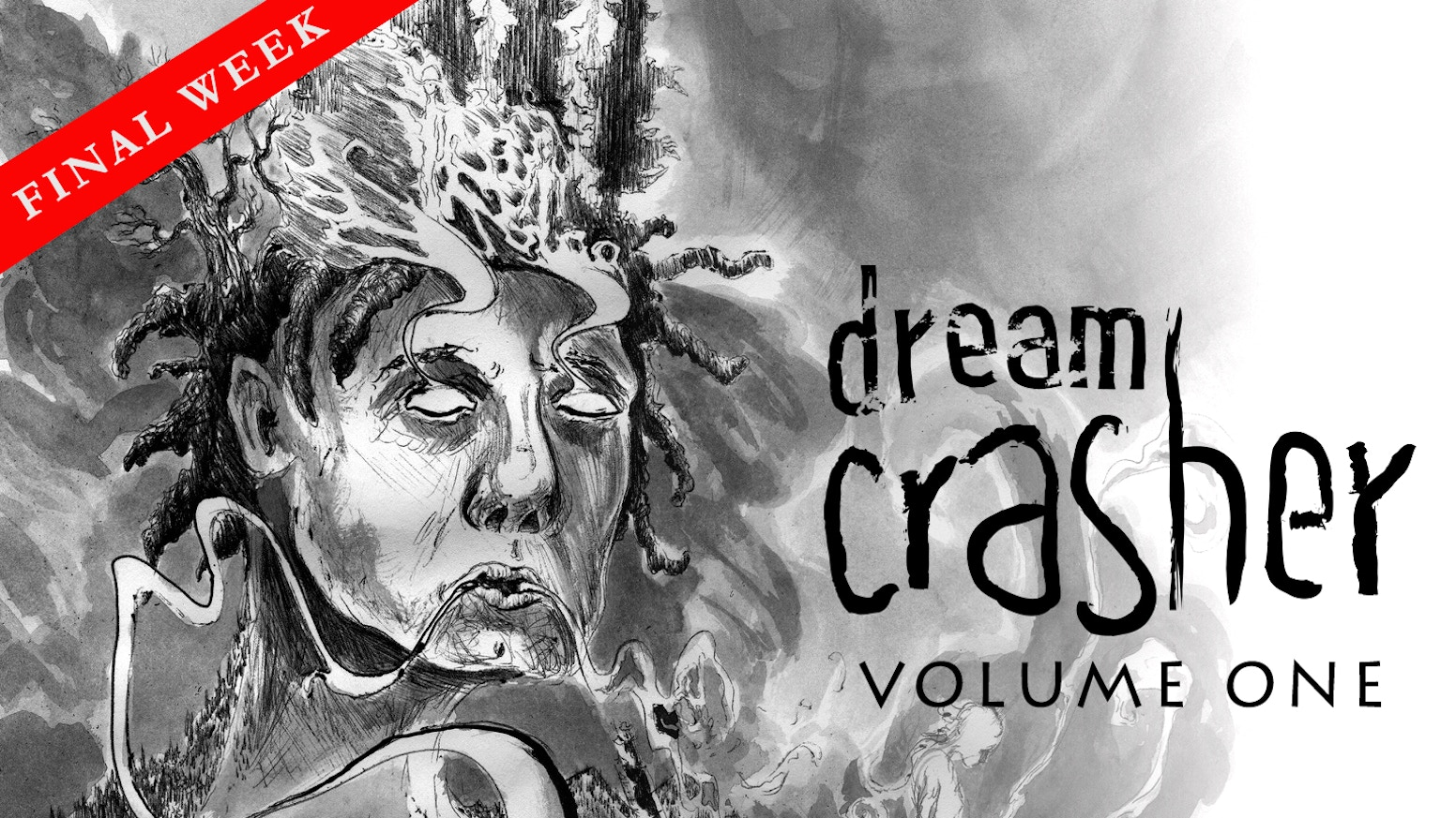 A 130 page trade paperback collection of Dream Crasher Volume 1, collecting chapters 1-4 into a single affordable volume.
