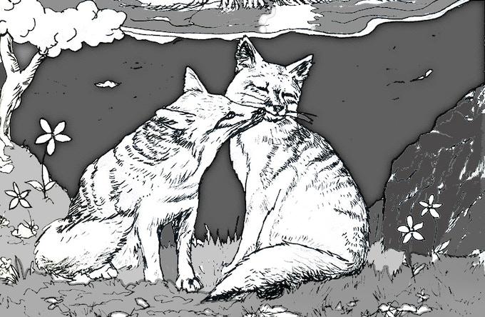 New art! The island fox (Urocyon littoralis)