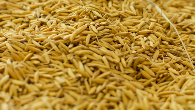 Brown Rice Bran & Germ, so nutritious!