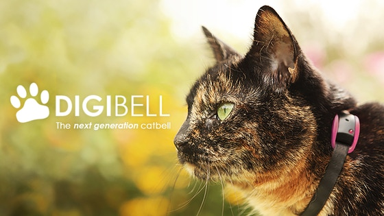 Digibell : The next generation cat bell