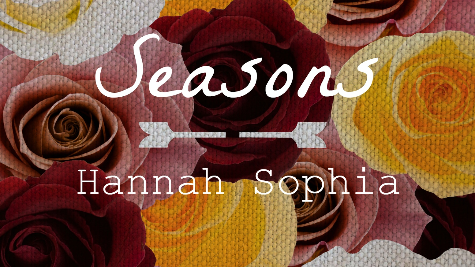 Seasons: Spring, Summer, Fall and Winter. Four EP's intertwined with art, photography, music videos and storytelling.