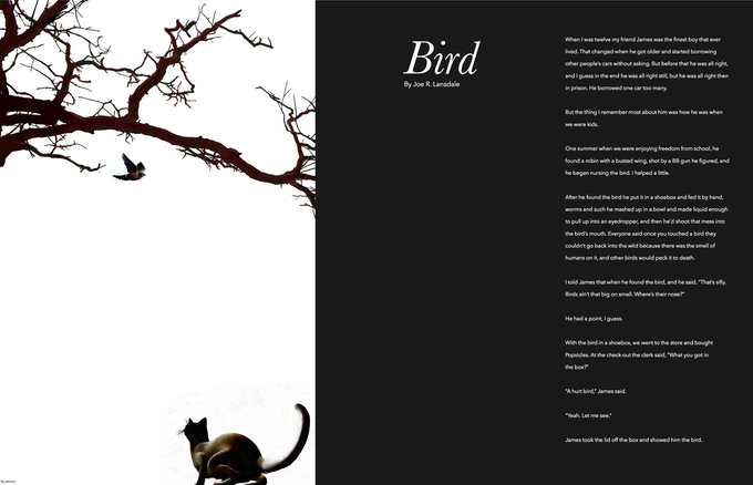 Prose by Joe Lansdale, Art by Tim Truman