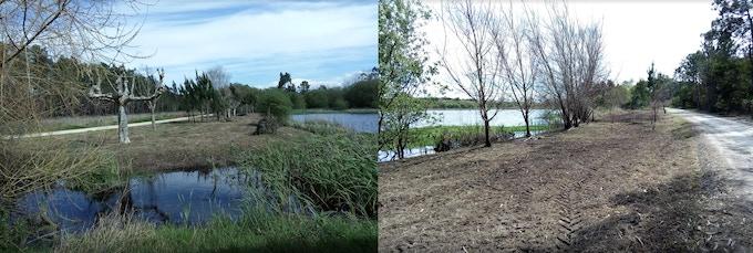 Lagoa dos Teixoeiros a necessitar de reabilitação (foto do projecto Teixoeiros ConVida)