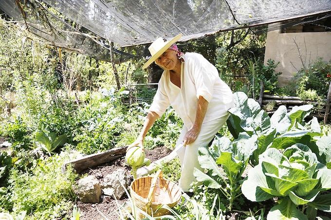 Diana in her garden