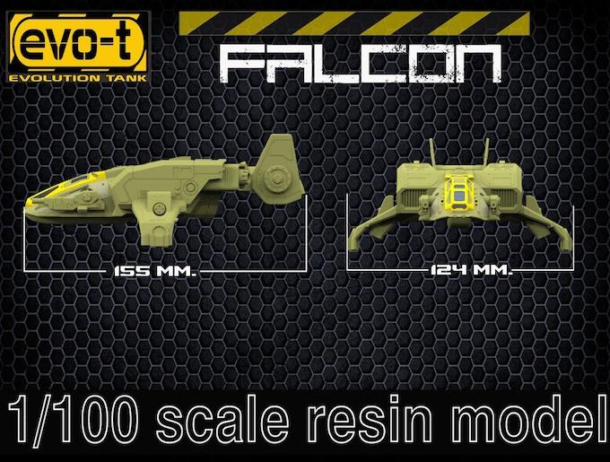 Falcon - size