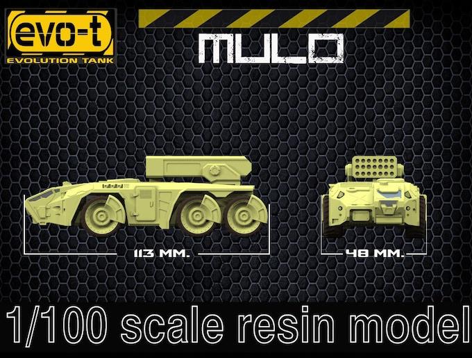 Mulo - size