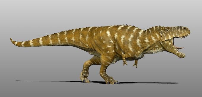 Tyrannosaurus for Beasts of Bermuda, by Manuel Gil