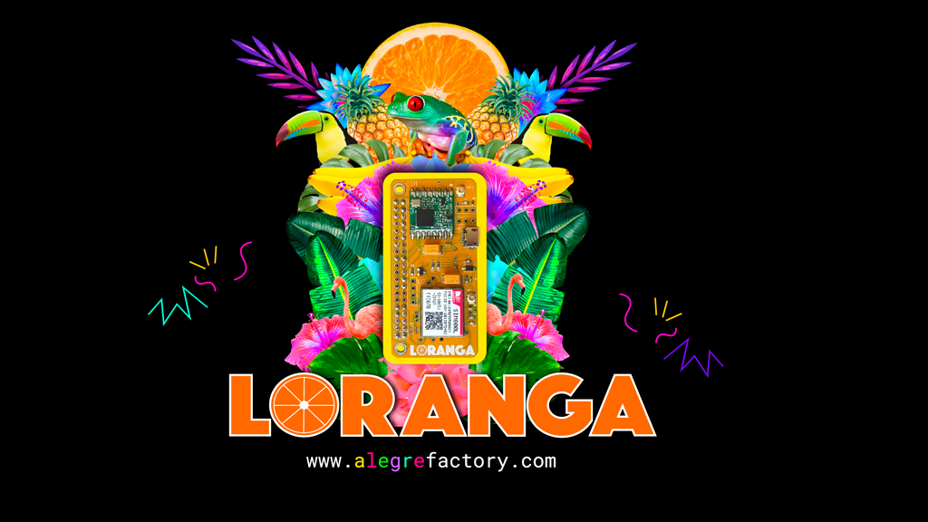 Loranga - Easy IoT project video thumbnail