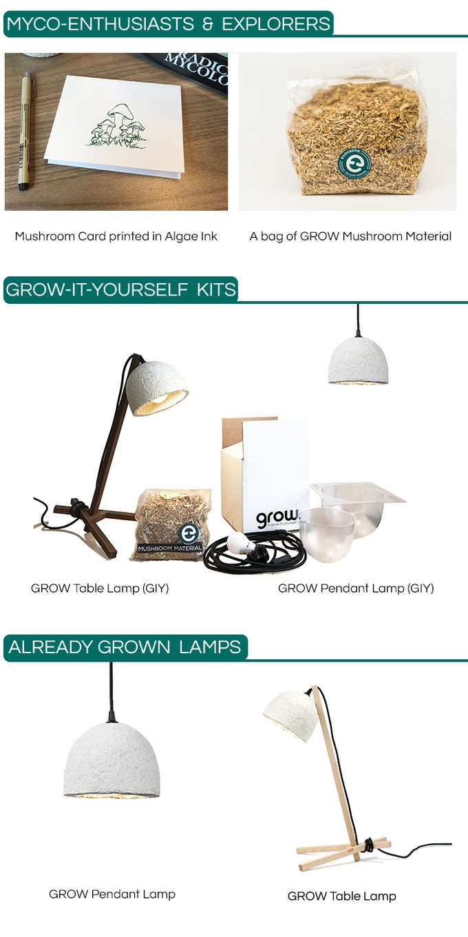 Grow a lamp you grow from mushroom mycelium by ecovative danielle make it a hanging pendant or add the tool free assembly table stand made from sustainably sourced wood in upstate ny to create a table lamp solutioingenieria Gallery