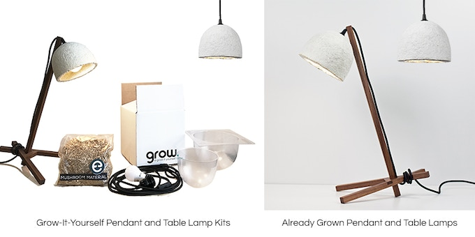 GROW: A Lamp YOU Grow from Mushroom Mycelium by Ecovative