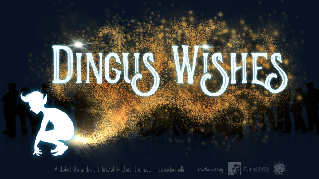 Dingus Wishes - a short comedic film about voting on a wish project video thumbnail