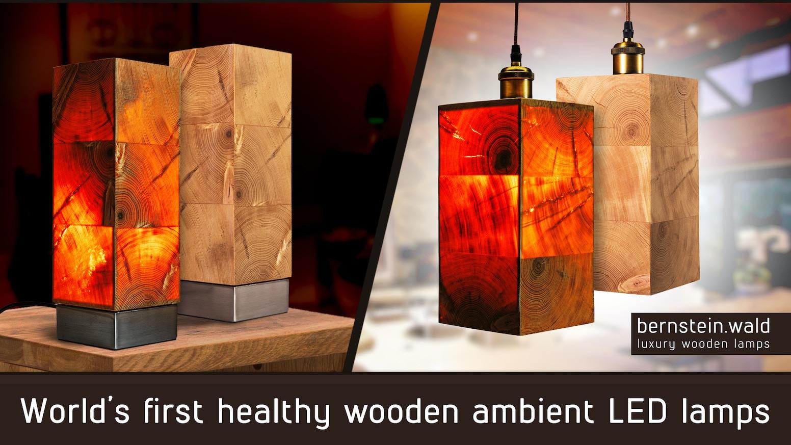 Bernstein Wald World S First Healthy Wooden Ambient