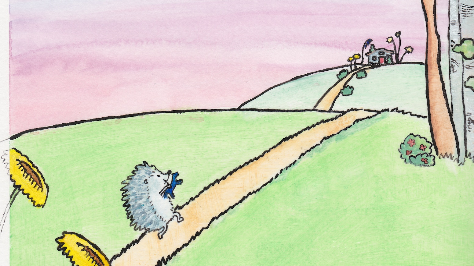 Quigley the quiet hedgehog by claudine norden kickstarter a childrens book about empowering the quiet temperament of the introverted child and to teach the world that quiet is okay gumiabroncs Choice Image