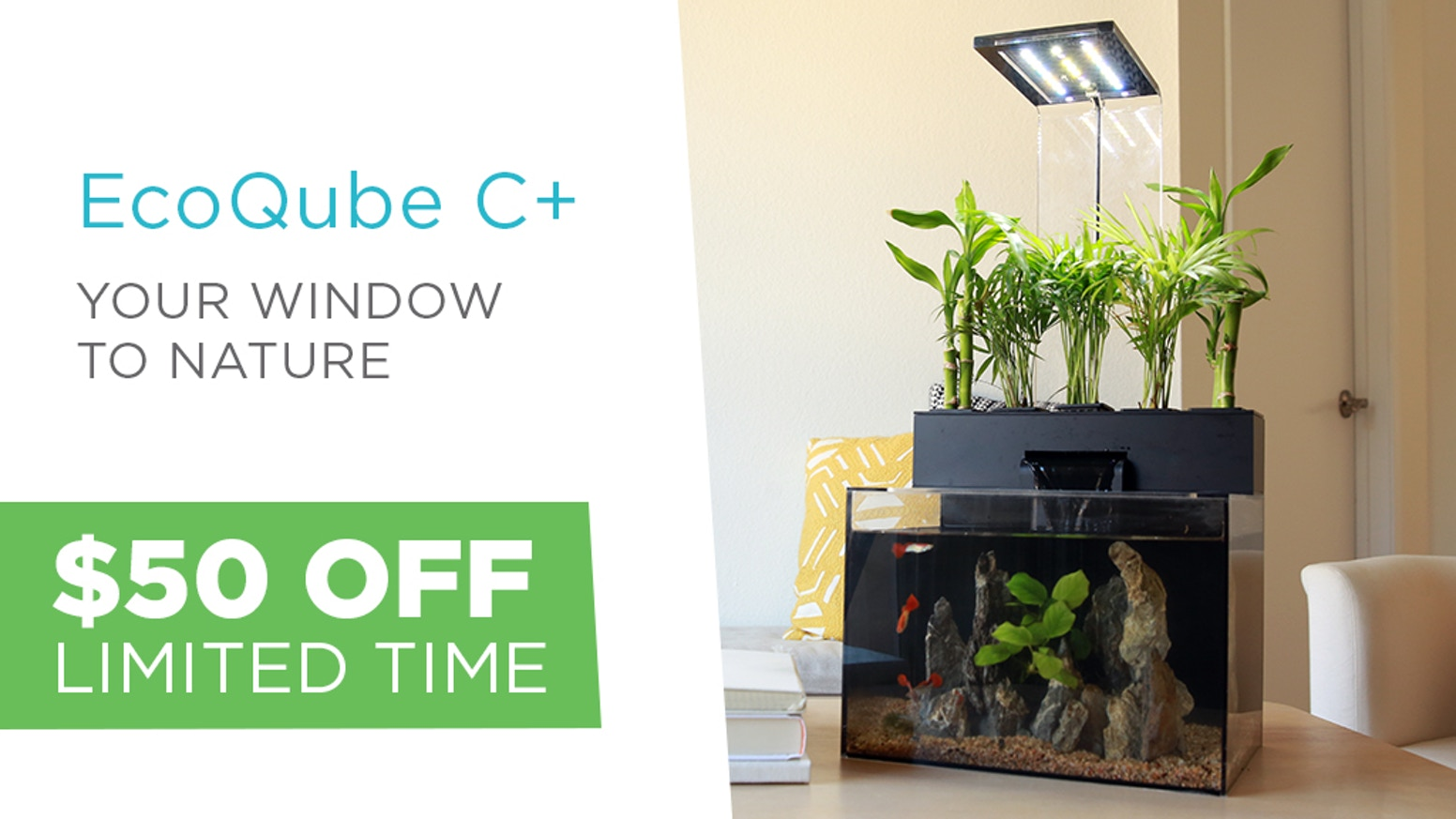 The Most Popular Aquarium on kickstarter is BACK! Beautiful and LOW maintenance way to keep a piece of nature in any space!