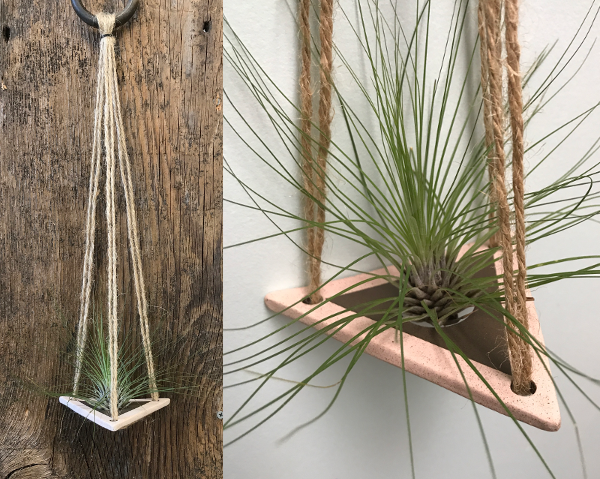 Air Plant Hanger by Clayflower Studios