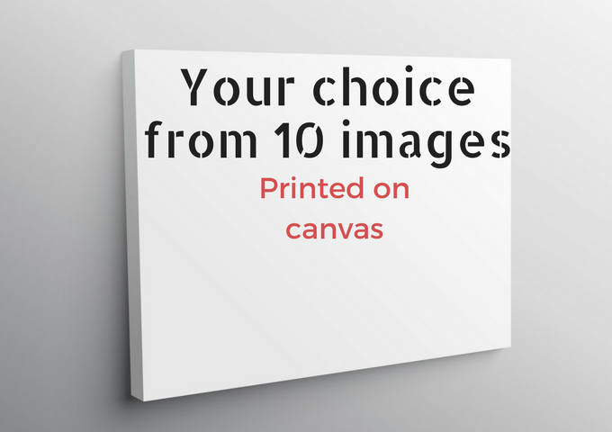 Example of Canvas Prints (designed by starline)