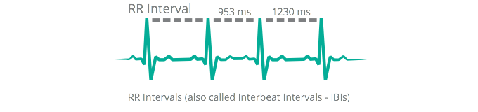 What is Heart Rate Variability (HRV) | RR intervals